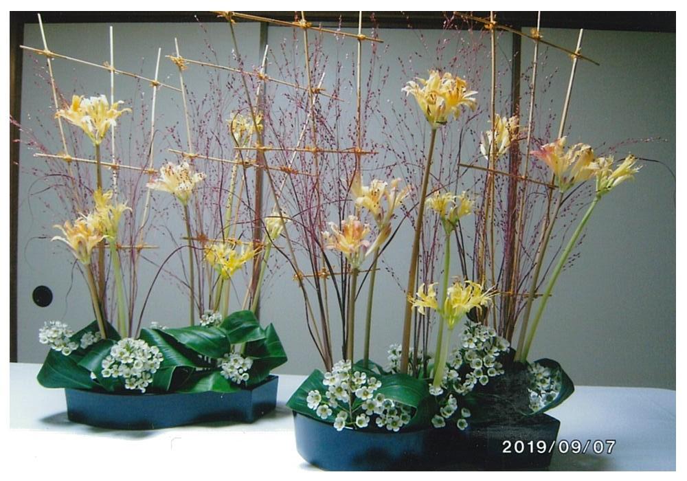 深谷駅の花