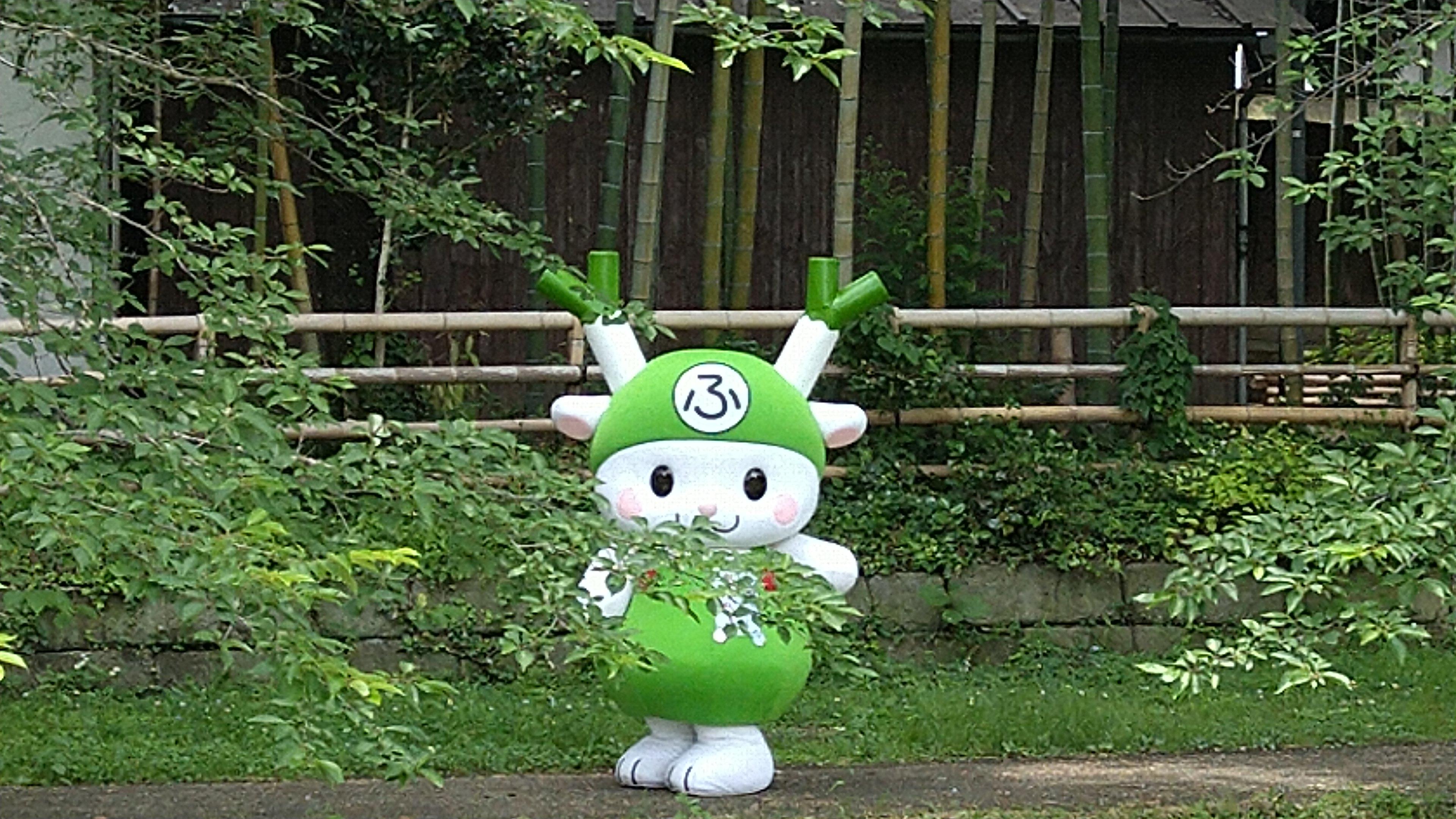 渋沢栄一体操をしていたら、ふっかちゃんに会えた!No.2