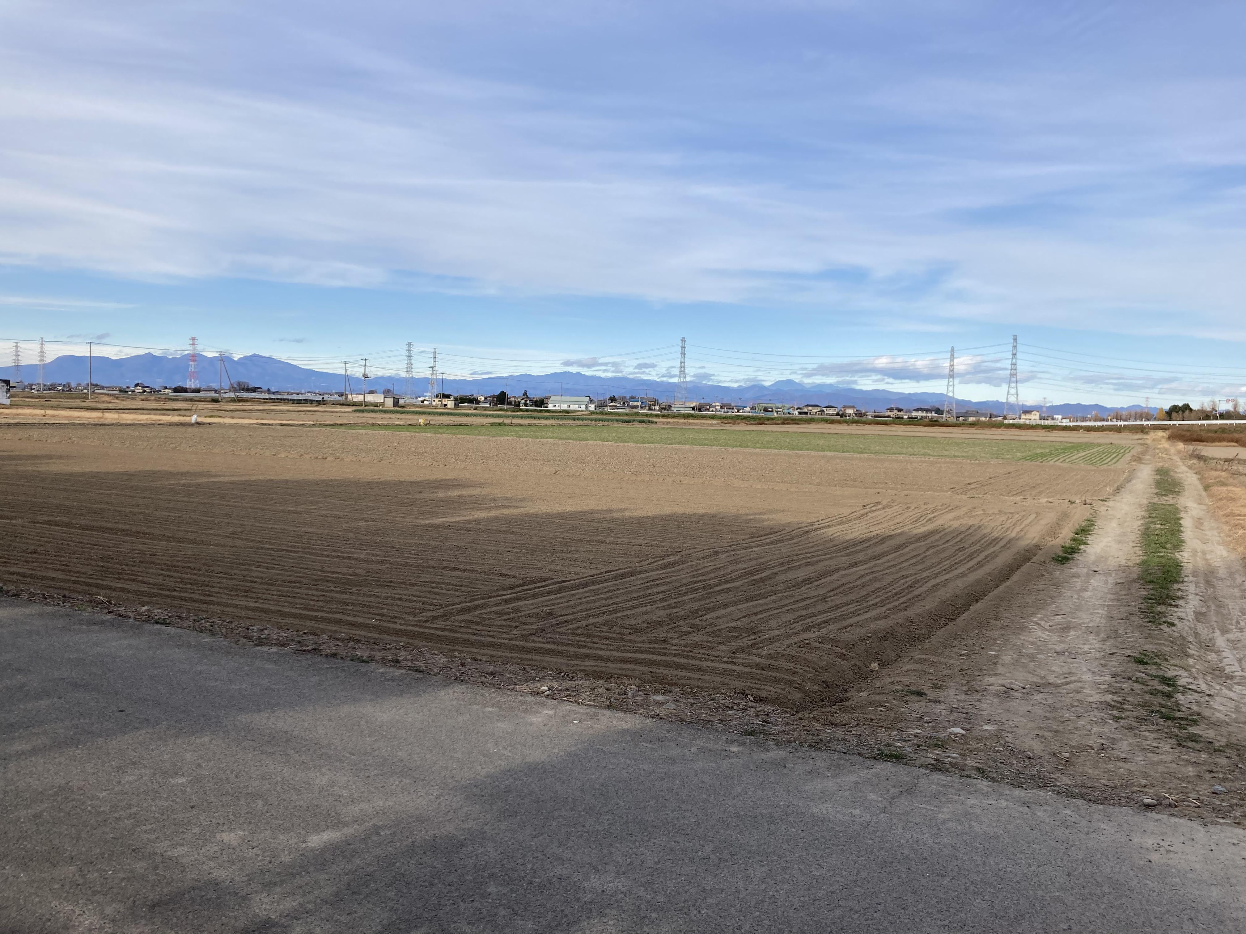 深谷市の整地された農地
