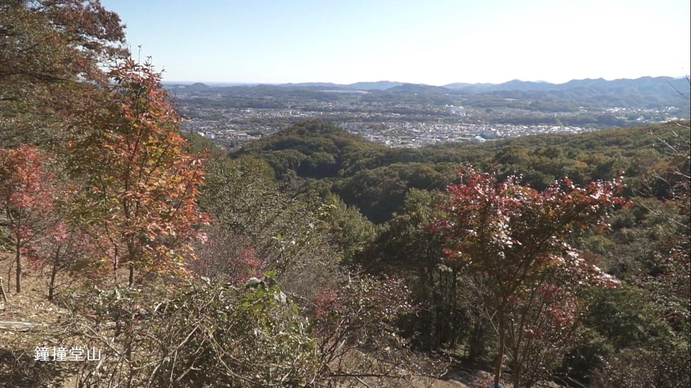 深谷の景色 鐘撞堂山 山頂付近からの景色